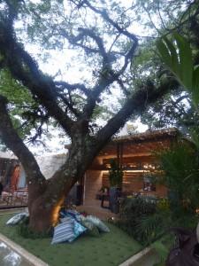Casa das Arvores - Gilberto Cioni e Olegario de Sa-s